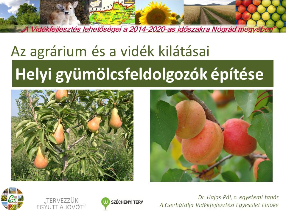 """Helyi gyümölcsfeldolgozók építése """"TERVEZZÜK EGYÜTT A JÖVŐT Dr."""