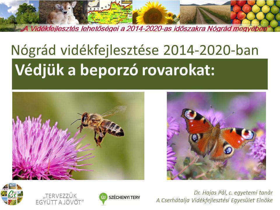 """Védjük a beporzó rovarokat: """"TERVEZZÜK EGYÜTT A JÖVŐT Dr."""