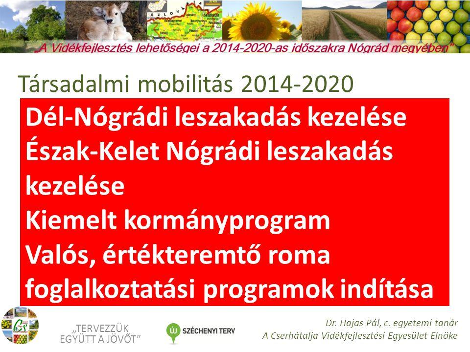 """Dél-Nógrádi leszakadás kezelése Észak-Kelet Nógrádi leszakadás kezelése Kiemelt kormányprogram Valós, értékteremtő roma foglalkoztatási programok indítása """"TERVEZZÜK EGYÜTT A JÖVŐT Dr."""