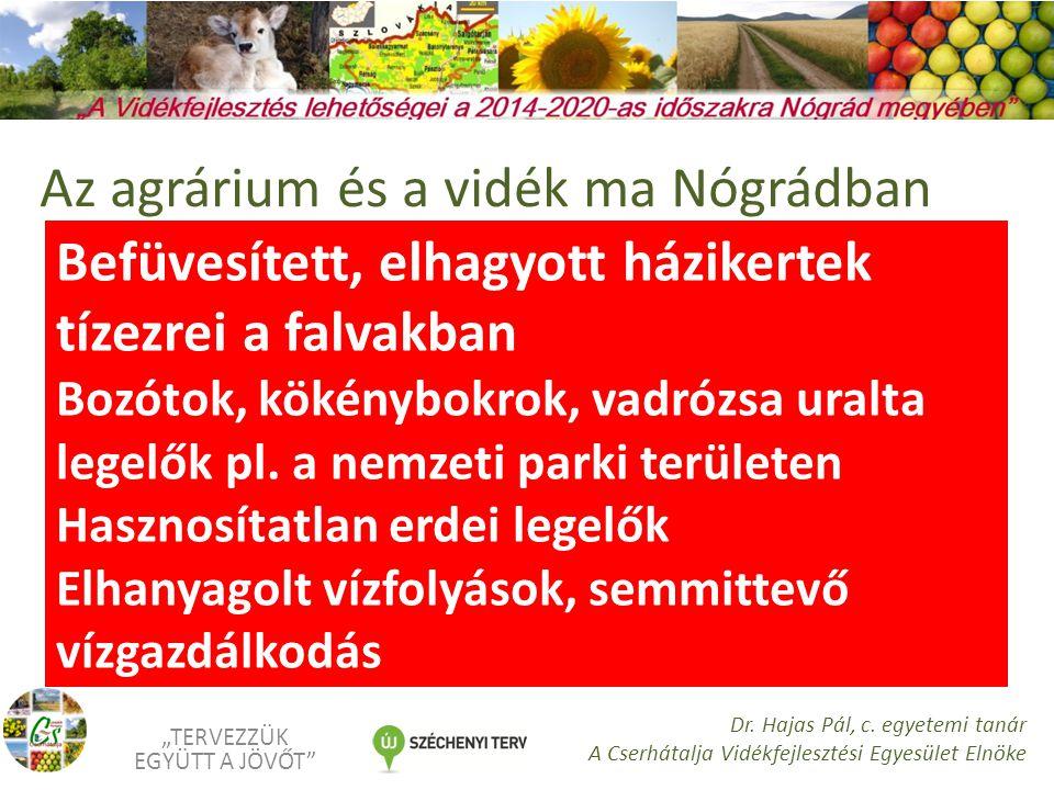 """Válaszaink: Termőföldjeink gondos fiatal gazdák kezébe adása - Földvédelem Elindul újra a háztáji program Az éghajlat- és talajadottságoknak megfelelő növények termelése (olajnövények, kalászosok, gyümölcsök) """"TERVEZZÜK EGYÜTT A JÖVŐT Dr."""