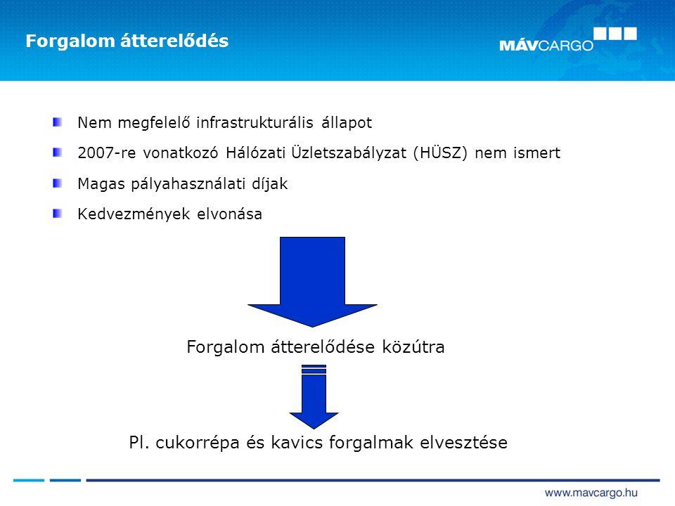 Forgalom átterelődés Nem megfelelő infrastrukturális állapot 2007-re vonatkozó Hálózati Üzletszabályzat (HÜSZ) nem ismert Magas pályahasználati díjak