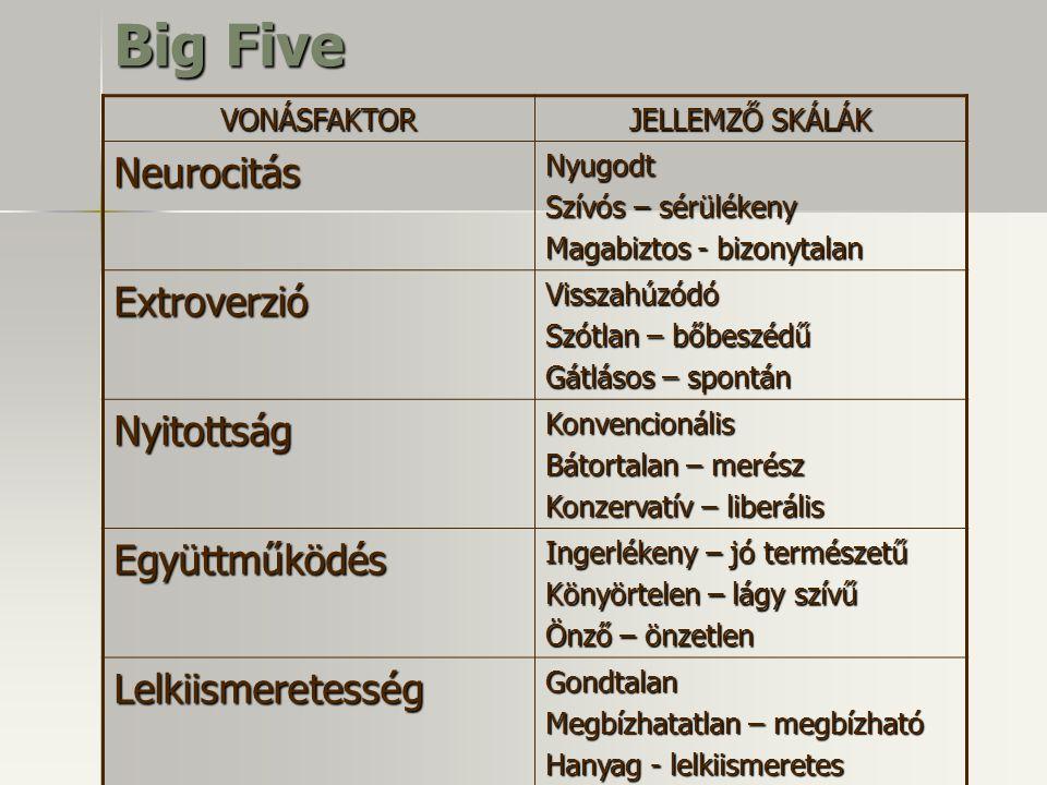Big Five VONÁSFAKTOR JELLEMZŐ SKÁLÁK NeurocitásNyugodt Szívós – sérülékeny Magabiztos - bizonytalan ExtroverzióVisszahúzódó Szótlan – bőbeszédű Gátlás