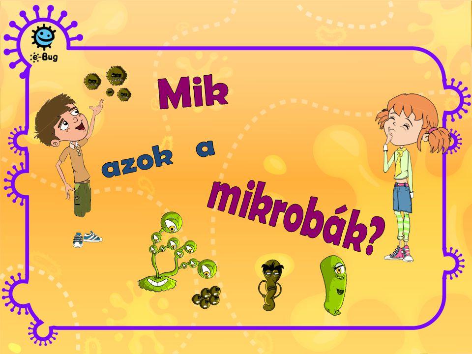 a mikrobák élő szervezetek olyan kicsik, hogy csak mikroszkóppal láthatóak, szabad szemmel nem sokféle alakban és méretben léteznek MINDENHOL megtalálhatóak legtöbbjük ártalmatlan, vagy éppen hasznos számunkra egyesek azonban betegséget okoznak