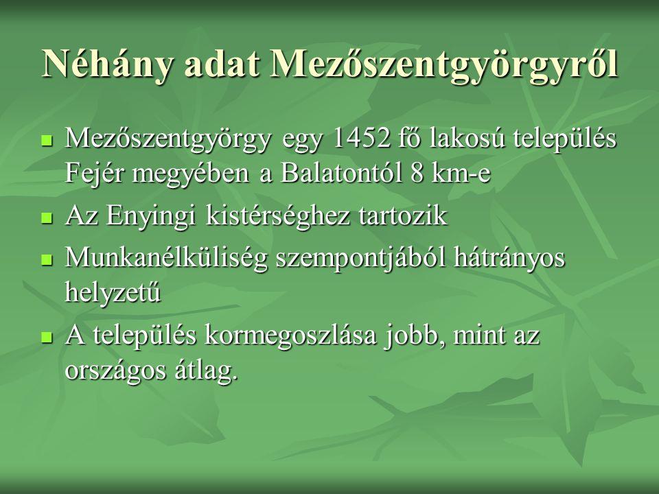 Néhány adat Mezőszentgyörgyről Mezőszentgyörgy egy 1452 fő lakosú település Fejér megyében a Balatontól 8 km-e Mezőszentgyörgy egy 1452 fő lakosú település Fejér megyében a Balatontól 8 km-e Az Enyingi kistérséghez tartozik Az Enyingi kistérséghez tartozik Munkanélküliség szempontjából hátrányos helyzetű Munkanélküliség szempontjából hátrányos helyzetű A település kormegoszlása jobb, mint az országos átlag.