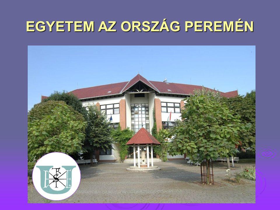 AZ INTÉZET FEJLŐDÉSE  1993 – DOTE főiskolai szintű diplomás ápoló képzés, nappali tagozat  1994 – diplomás ápoló levelező tagozat  2000 – TSF (Tessedik Sámuel Főiskola) integrált része  2003 – főiskolai szintű általános szociális munkás szak  2002/2003 – Nyugdíjasok akadémiája Meghirdetett képzési programok: Meghirdetett képzési programok: informatikainformatika önismeretönismeret betegápolási alapismeretek és gyakorlatbetegápolási alapismeretek és gyakorlat az időskor pszichológiai változásaiaz időskor pszichológiai változásai egészségügyi ismeretekegészségügyi ismeretek természetgyógyászati alapismeretektermészetgyógyászati alapismeretek időskori egészségmegőrzésidőskori egészségmegőrzés  2003 – ECDL vizsgaközpontja  2006 – Egészségügyi szervezői alapszak egészségturizmus szakiránya  2006 – Szociális munka szak  2006 – Ápolás és betegellátás: ápoló szakirány (diplomás ápoló szak)  2009 – Szent István Egyetemmel történő integráció