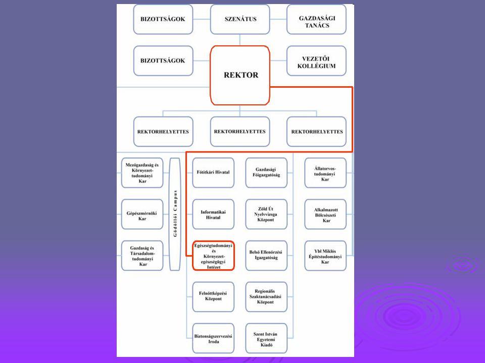 """AZ INTÉZET JELENLEGI OKTATÁSI SZERKEZETE  Ápolás és betegápolás alapszak – ápoló szakirány (BSc)  Szociális munka alapszak (BA)  Egészségügyi szervező alapszak – egészségturizmus- szervező szakirány (BSc)  Európai pénzügyi ismeretek (hazai és romániai kis- és középvállalkozók számára az intézmény """"Elektronikus Távoktatási Központjának (E-learning center) képzésében  Felnőttek számára nyújtott tanfolyami képzések (ECDL, külterületen élők személyi segítői képzése, jelnyelvi képzés érettségizettek számára, Csikung: a kínai orvoslás speciális módszerei legalább érettségizettek számára, Nyugdíjasok Akadémiája)"""