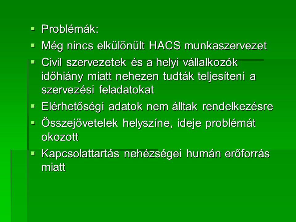  Problémák:  Még nincs elkülönült HACS munkaszervezet  Civil szervezetek és a helyi vállalkozók időhiány miatt nehezen tudták teljesíteni a szervezési feladatokat  Elérhetőségi adatok nem álltak rendelkezésre  Összejövetelek helyszíne, ideje problémát okozott  Kapcsolattartás nehézségei humán erőforrás miatt