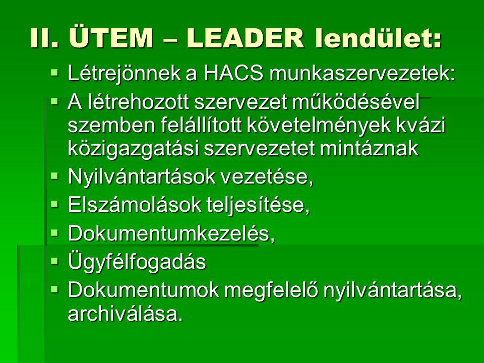  Létrejönnek a HACS munkaszervezetek:  A létrehozott szervezet működésével szemben felállított követelmények kvázi közigazgatási szervezetet mintáznak  Nyilvántartások vezetése,  Elszámolások teljesítése,  Dokumentumkezelés,  Ügyfélfogadás  Dokumentumok megfelelő nyilvántartása, archiválása.