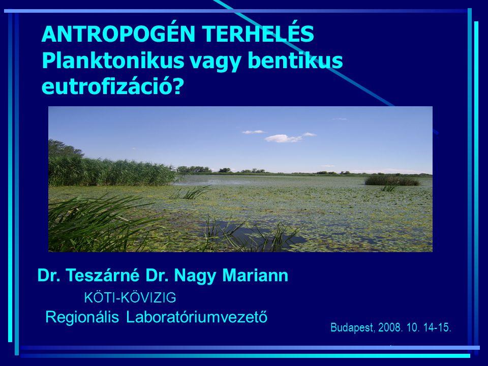 Dr. Teszárné Dr. Nagy Mariann KÖTI-KÖVIZIG Regionális Laboratóriumvezető Budapest, 2008. 10. 14-15.. ANTROPOGÉN TERHELÉS Planktonikus vagy bentikus eu