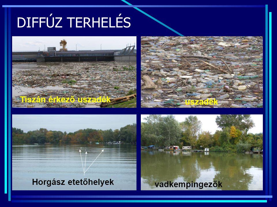 DIFFÚZ TERHELÉS uszadék Horgász etetőhelyek Tiszán érkező uszadék vadkempingezők