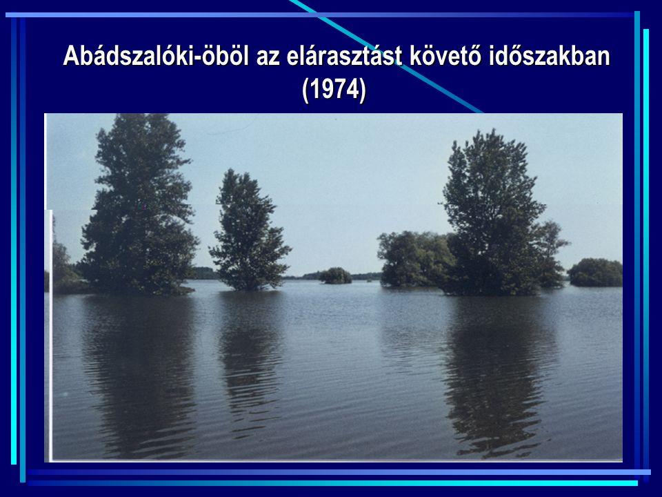 Abádszalóki-öböl az elárasztást követő időszakban (1974) Abádszalóki-öböl az elárasztást követő időszakban (1974)