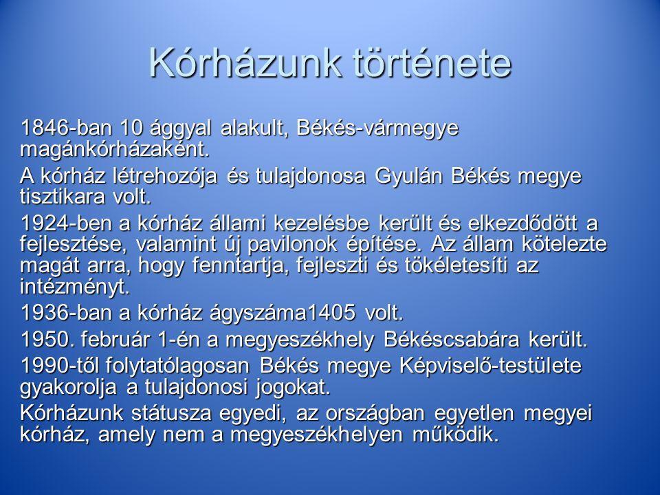 Kórházunk története 1846-ban 10 ággyal alakult, Békés-vármegye magánkórházaként. A kórház létrehozója és tulajdonosa Gyulán Békés megye tisztikara vol