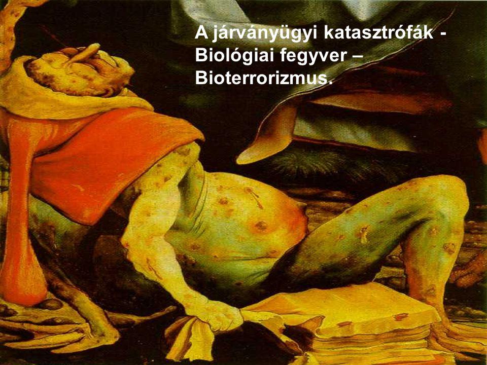 Dr Mucsi Gyula A KATASZTRÓFÁK FELOSZTÁSA WHO M.1999 Fertőző betegségek általi érintettség