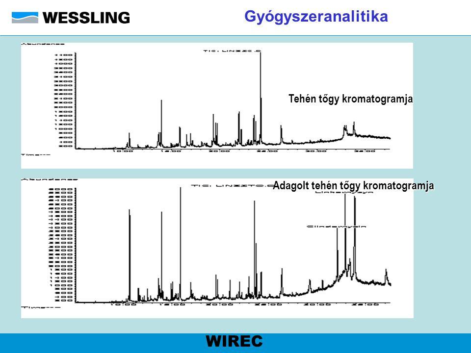 Gyógyszeranalitika Tehén tőgy kromatogramja Adagolt tehén tőgy kromatogramja WIREC