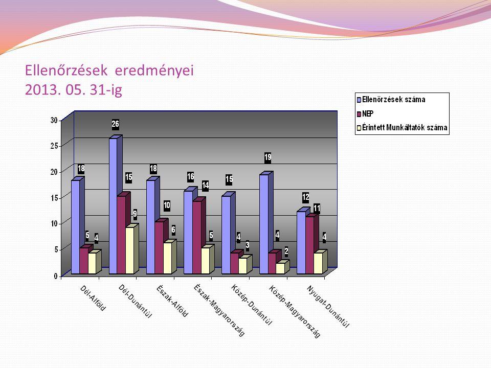Ellenőrzések eredményei 2013. 05. 31-ig