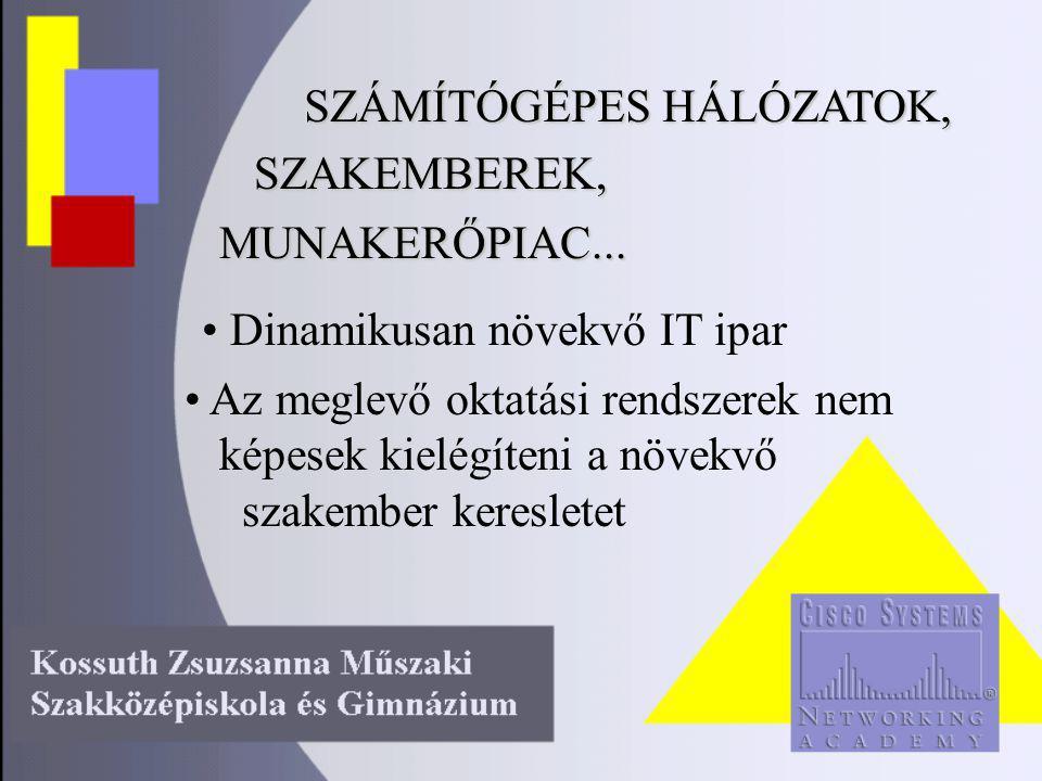 SZÁMÍTÓGÉPES HÁLÓZATOK, SZAKEMBEREK, MUNAKERŐPIAC...