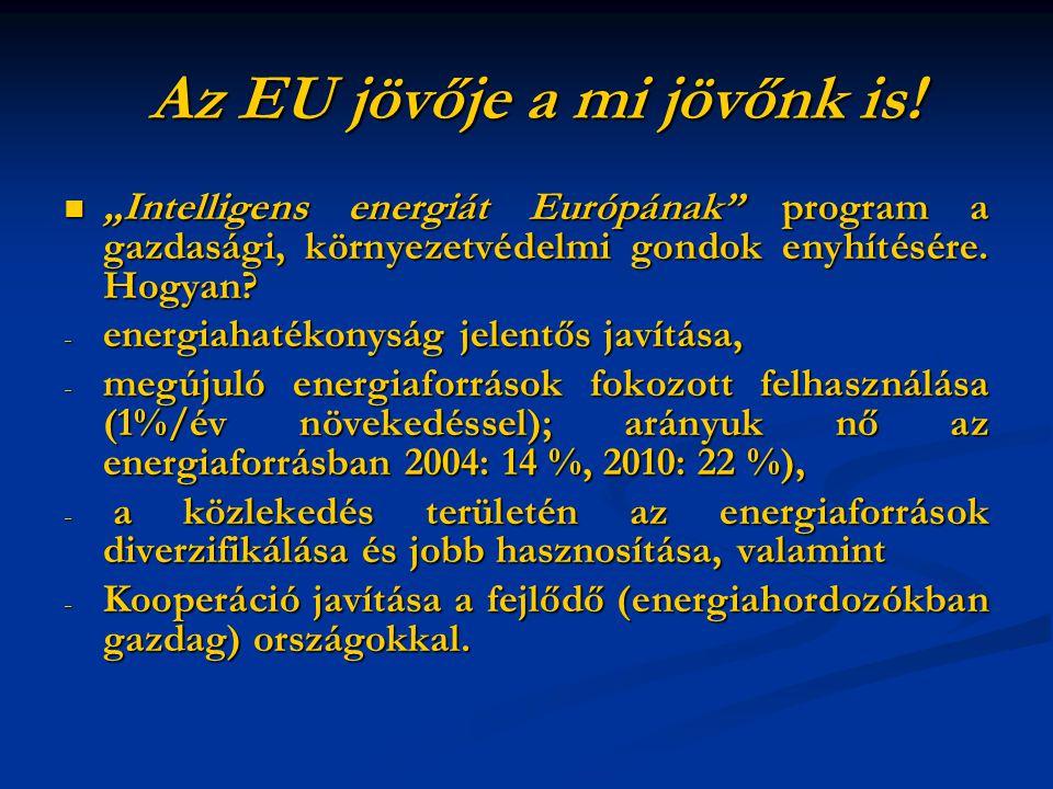 Az EU jövője a mi jövőnk is. Az EU jövője a mi jövőnk is.