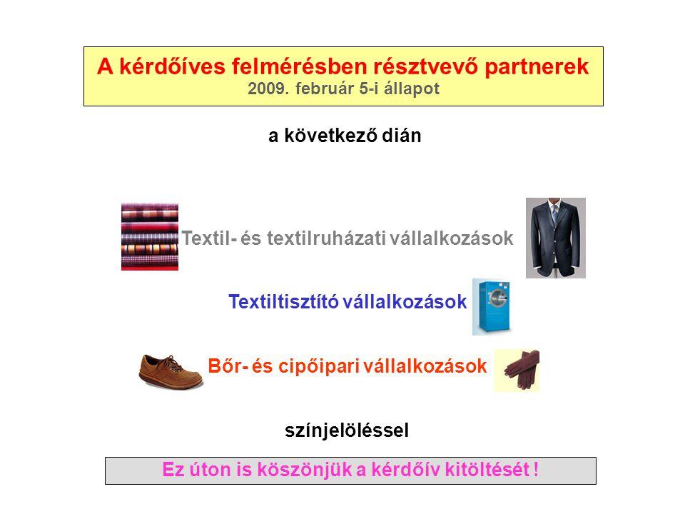 A kérdőíves felmérésben résztvevő partnerek 2009. február 5-i állapot Textil- és textilruházati vállalkozások Textiltisztító vállalkozások Bőr- és cip