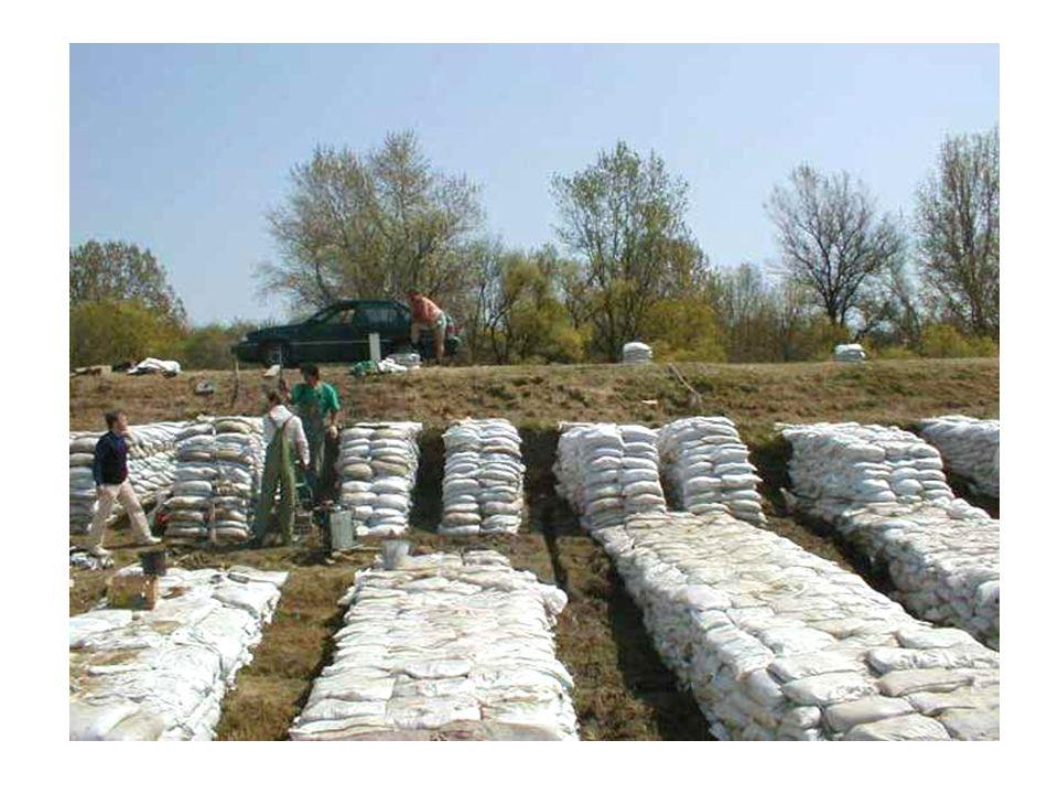 A talajvíz felszínvonal alakulása [4] (vízoldali töltéserősítés vízzáró anyagból) A töltéserösítés szinte hatástalan