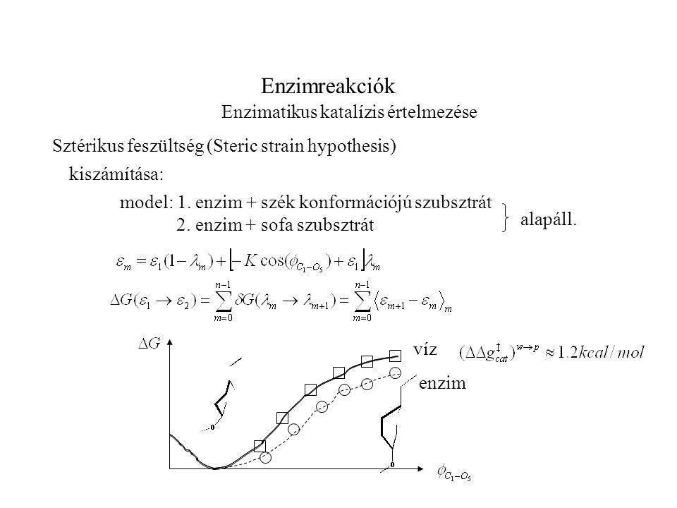 Enzimreakciók Enzimatikus katalízis értelmezése Sztérikus feszültség (Steric strain hypothesis) model: 1.