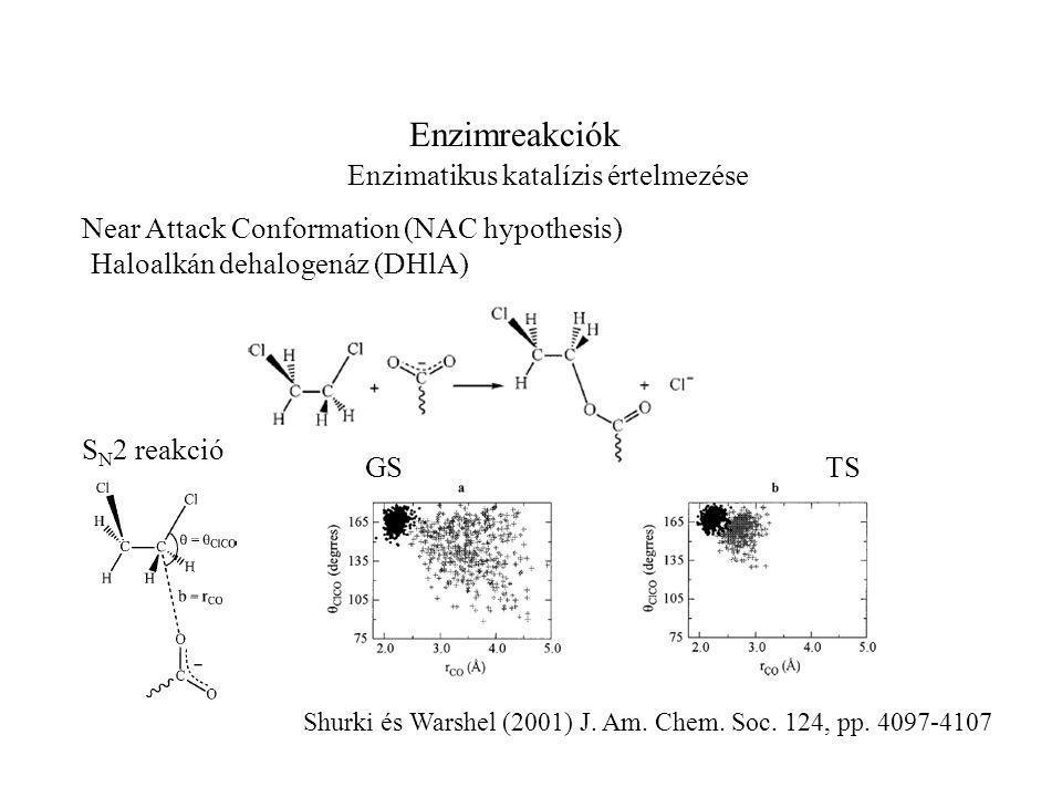 Enzimreakciók Enzimatikus katalízis értelmezése Near Attack Conformation (NAC hypothesis) Haloalkán dehalogenáz (DHlA) GS S N 2 reakció TS Shurki és Warshel (2001) J.