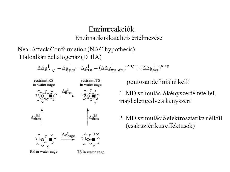 Enzimreakciók Enzimatikus katalízis értelmezése Near Attack Conformation (NAC hypothesis) Haloalkán dehalogenáz (DHlA) pontosan definiálni kell.