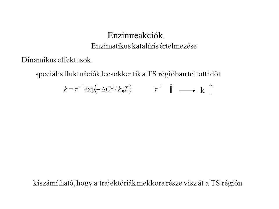 Enzimreakciók Enzimatikus katalízis értelmezése Dinamikus effektusok speciális fluktuációk lecsökkentik a TS régióban töltött időt k kiszámítható, hogy a trajektóriák mekkora része visz át a TS régión