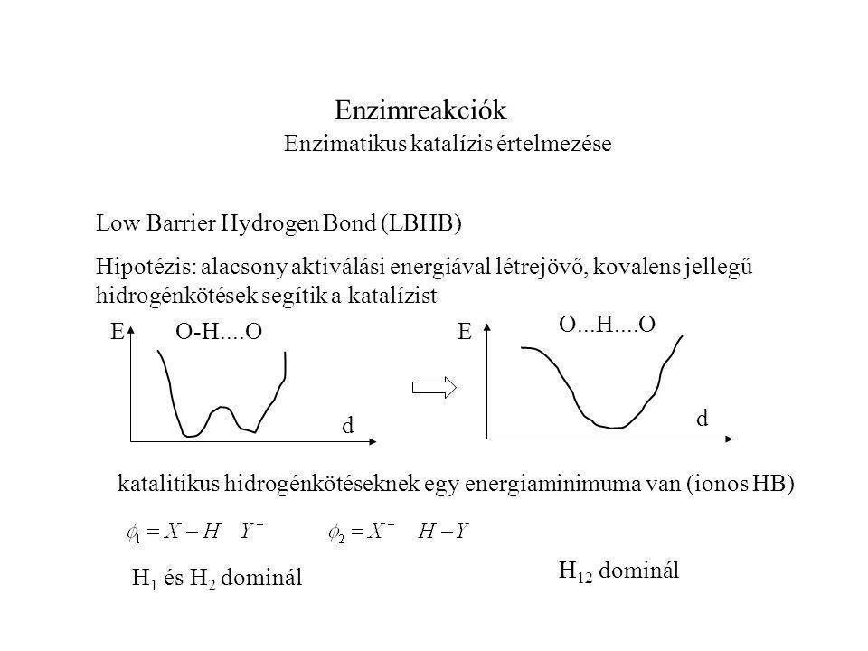 Enzimreakciók Enzimatikus katalízis értelmezése Low Barrier Hydrogen Bond (LBHB) katalitikus hidrogénkötéseknek egy energiaminimuma van (ionos HB) Hipotézis: alacsony aktiválási energiával létrejövő, kovalens jellegű hidrogénkötések segítik a katalízist EE d d O-H....O O...H....O H 1 és H 2 dominál H 12 dominál