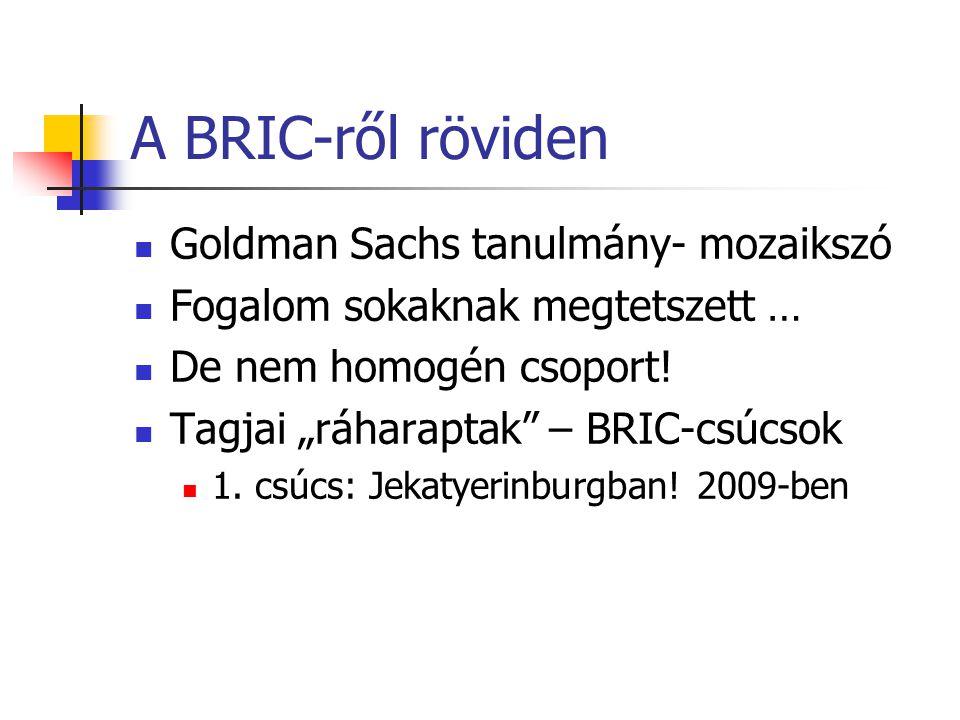 """A BRIC-ről röviden Goldman Sachs tanulmány- mozaikszó Fogalom sokaknak megtetszett … De nem homogén csoport! Tagjai """"ráharaptak"""" – BRIC-csúcsok 1. csú"""