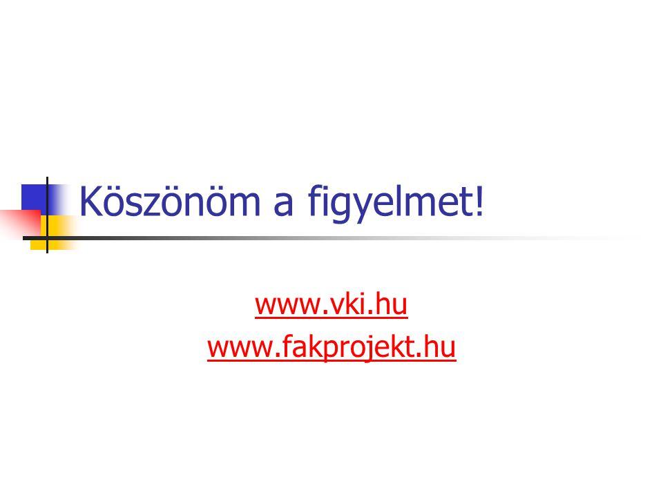 Köszönöm a figyelmet! www.vki.hu www.fakprojekt.hu