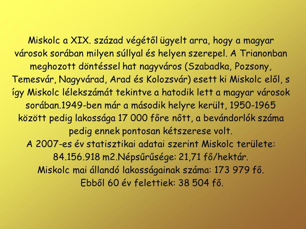 Miskolc a XIX.
