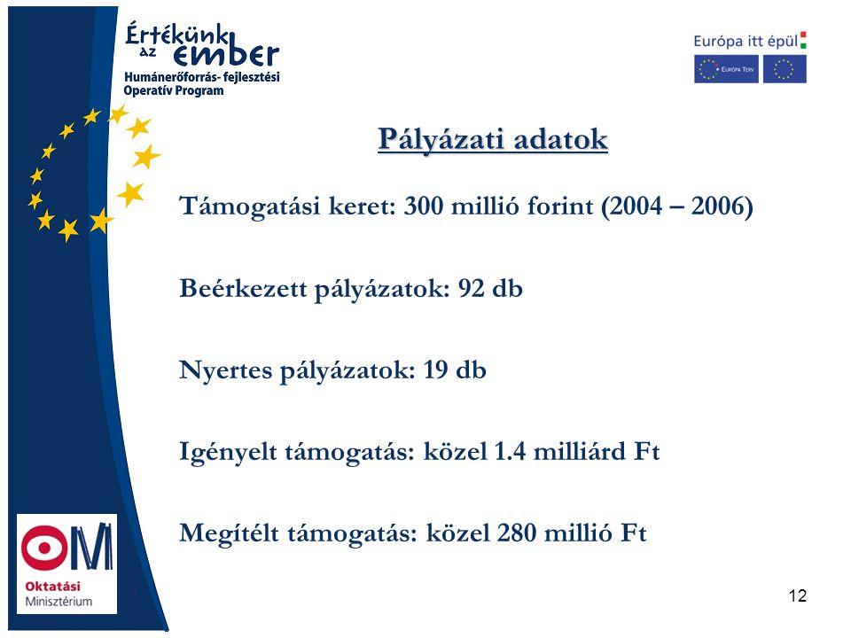12 Pályázati adatok Támogatási keret: 300 millió forint (2004 – 2006) Beérkezett pályázatok: 92 db Nyertes pályázatok: 19 db Igényelt támogatás: közel