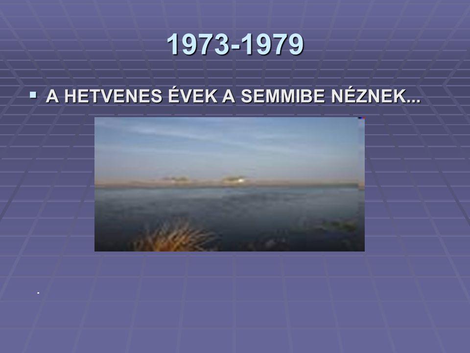 1973-1979  A HETVENES ÉVEK A SEMMIBE NÉZNEK....