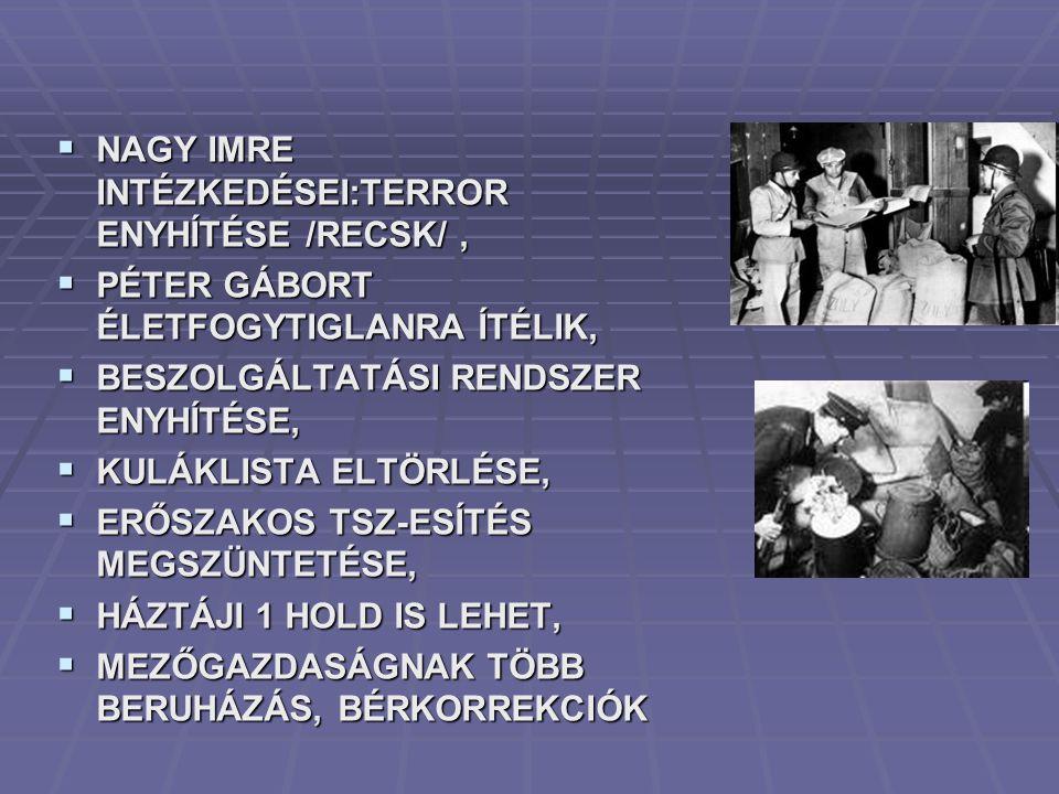 1981  NINCS TOVÁBB, BELÉPÜNK AZ IMF-BE  FELEMÁS GAZDASÁGPOLITIKA, STAGNÁLUNK.