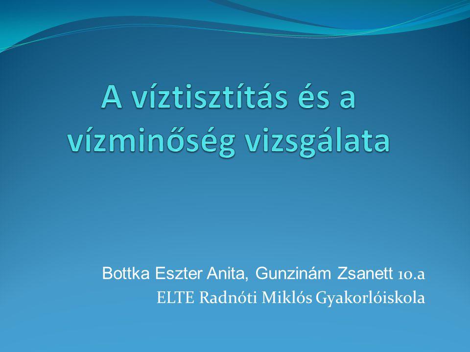 Bottka Eszter Anita, Gunzinám Zsanett 10.a ELTE Radnóti Miklós Gyakorlóiskola