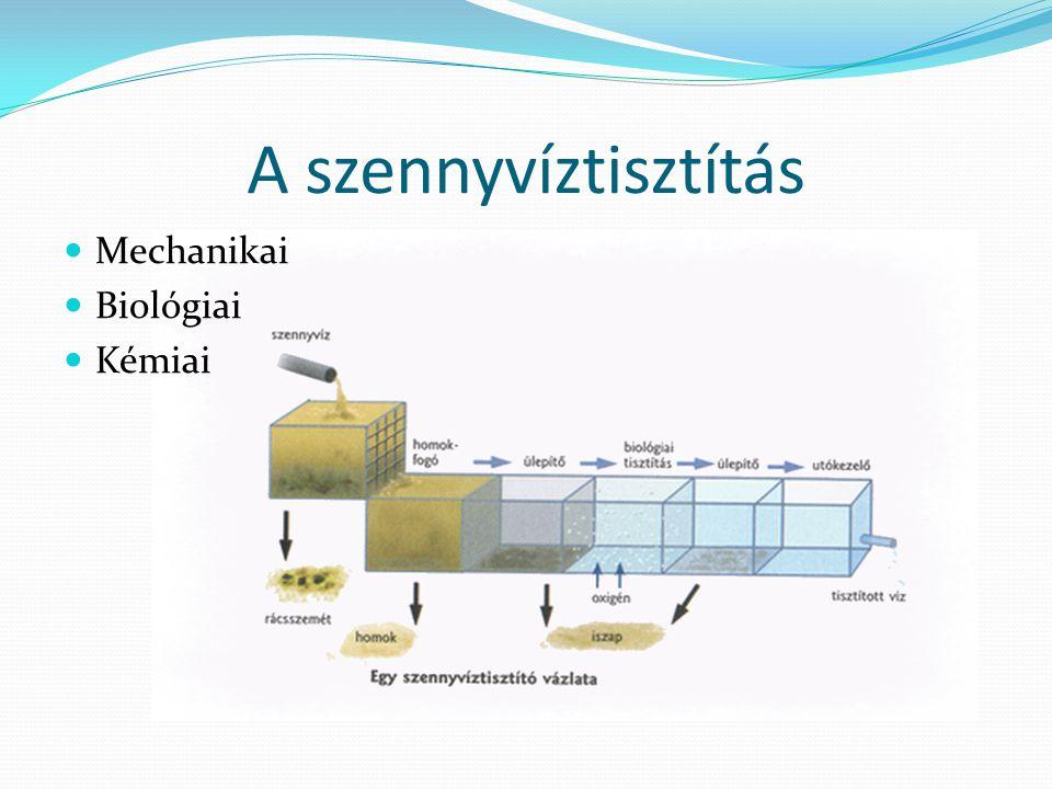 A szennyvíztisztítás Mechanikai Biológiai Kémiai