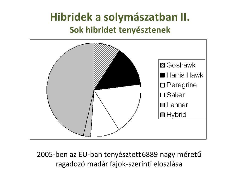 Hibridek a solymászatban II. Sok hibridet tenyésztenek 2005-ben az EU-ban tenyésztett 6889 nagy méretű ragadozó madár fajok-szerinti eloszlása
