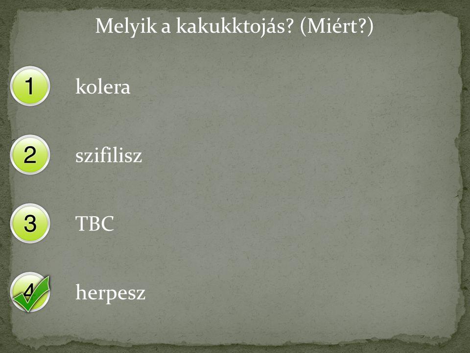 Melyik a kakukktojás? (Miért?) kolera szifilisz TBC herpesz