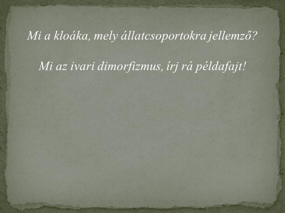Mi a kloáka, mely állatcsoportokra jellemző? Mi az ivari dimorfizmus, írj rá példafajt!