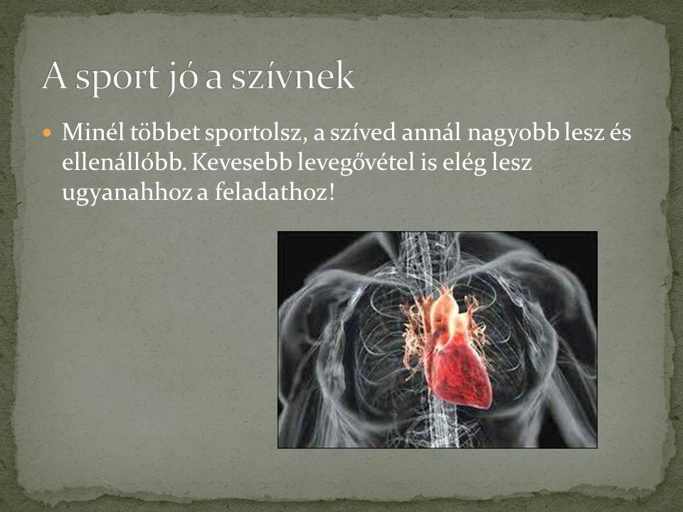 Minél többet sportolsz, a szíved annál nagyobb lesz és ellenállóbb. Kevesebb levegővétel is elég lesz ugyanahhoz a feladathoz!