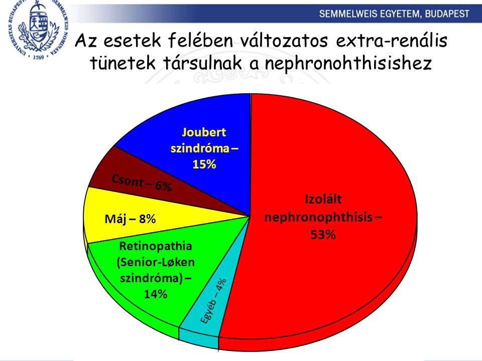 Egyéb – 4% Joubert szindróma – 15% Az esetek felében változatos extra-renális tünetek társulnak a nephronohthisishez Izolált nephronophthisis – 53% Re