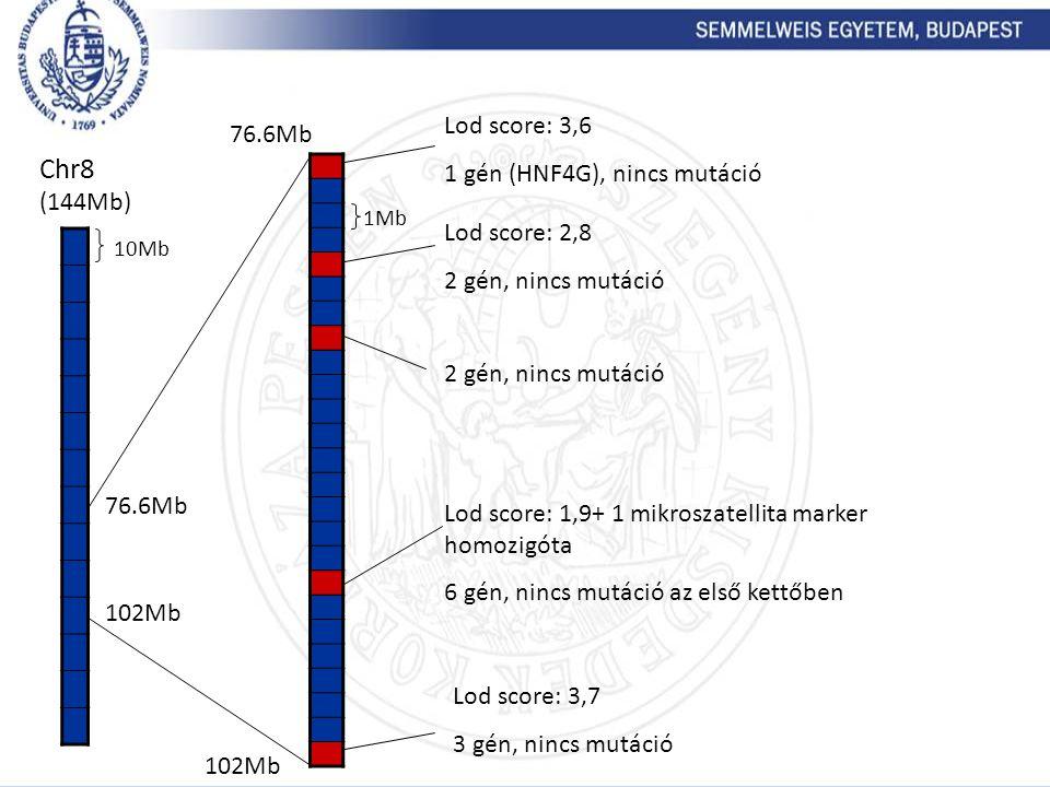 Chr8 (144Mb) 10Mb 76.6Mb 102Mb 1Mb Lod score: 3,6 1 gén (HNF4G), nincs mutáció 2 gén, nincs mutáció Lod score: 1,9+ 1 mikroszatellita marker homozigót