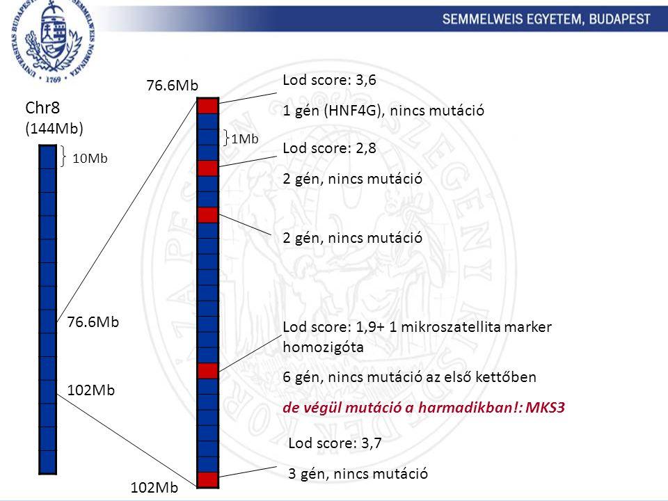 Chr8 (144Mb) 10Mb 76.6Mb 102Mb 1Mb Lod score: 3,6 1 gén (HNF4G), nincs mutáció Lod score: 1,9+ 1 mikroszatellita marker homozigóta 6 gén, nincs mutáci