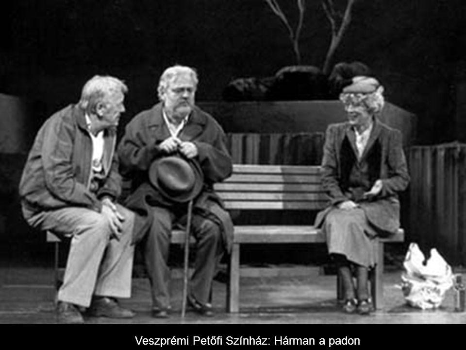 Hazatérés, Veszprém, 1989.