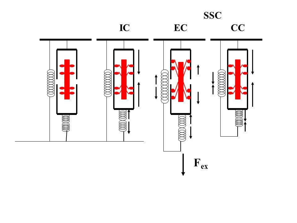 A nagyobb teljesítmény okai lehetnek: Elasztikus energia tárolás Nagyobb aktivációs szint Stretch reflex Nagyobb feszülés a kontrakció kezdetén Hosszabb aktivációs időtartam