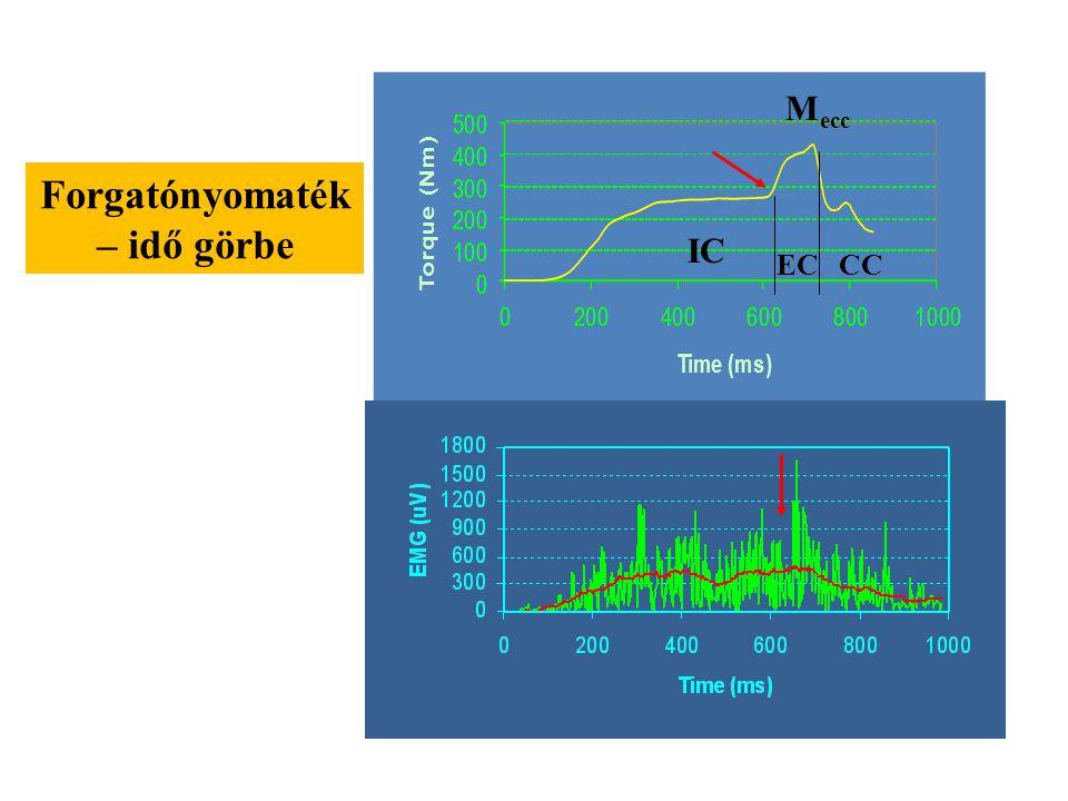 EMG, Vastus lateralis M ecc IC ECCC Feltételezhetően a short range stiffnessnek a passzív elasztikus elemek megnyújtása az oka. Ezt követően a nyújtás