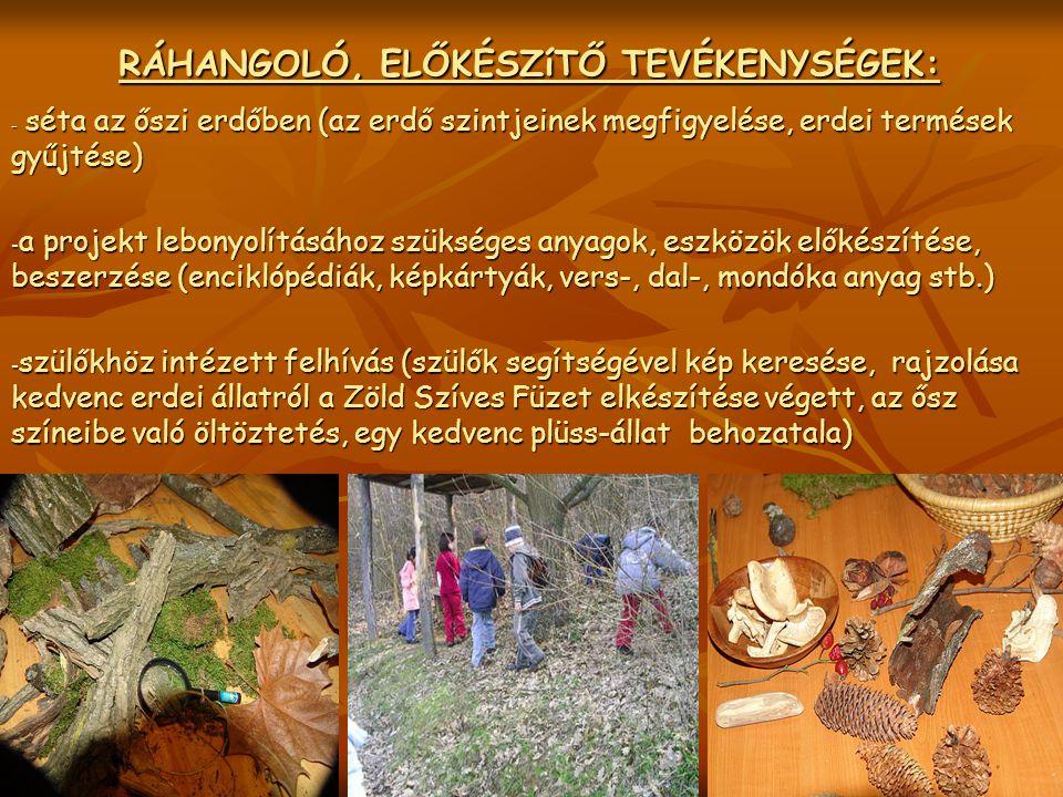 RÁHANGOLÓ, ELŐKÉSZíTŐ TEVÉKENYSÉGEK: RÁHANGOLÓ, ELŐKÉSZíTŐ TEVÉKENYSÉGEK: - séta az őszi erdőben (az erdő szintjeinek megfigyelése, erdei termések gyű