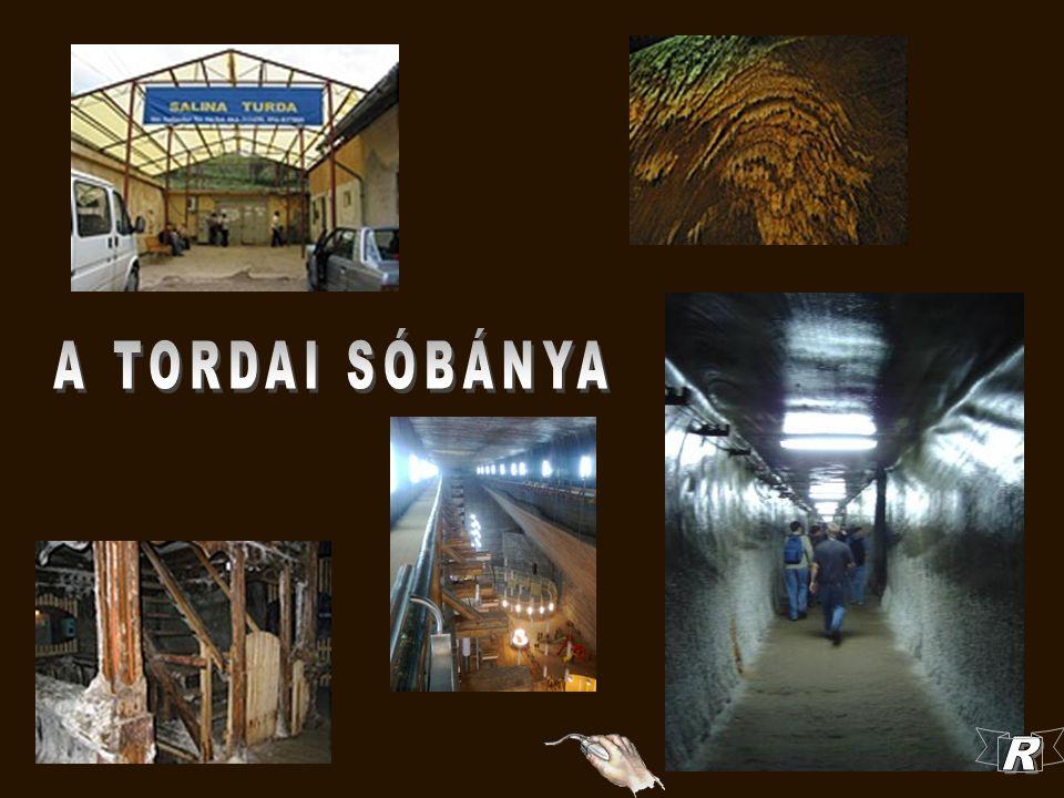 A Tordai Sóbánya korszerűsítésének munkálatai 2008 januárjában kezdődtek Dumitru Iosif építészmérnök vezetése alatt.