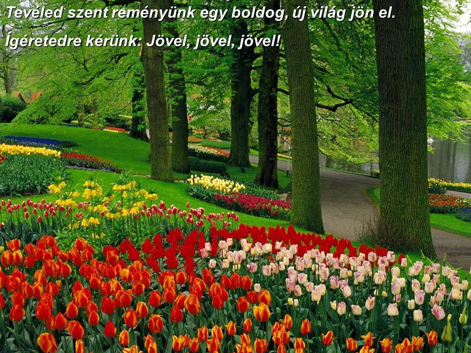 Tevéled szent reményünk egy boldog, új világ jön el. Ígéretedre kérünk: Jövel, jövel, jövel!
