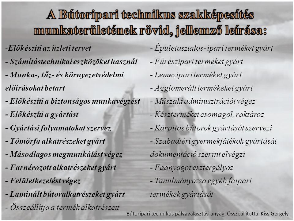 Bútoripari technikus pályaválasztási anyag.